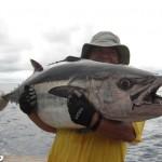 Dogtooth Tuna aboard Bite Me