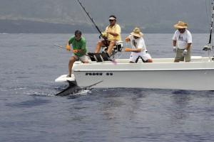 Tackle to tackle bigger fish